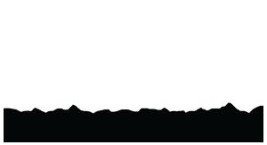 Thewald Security Logo